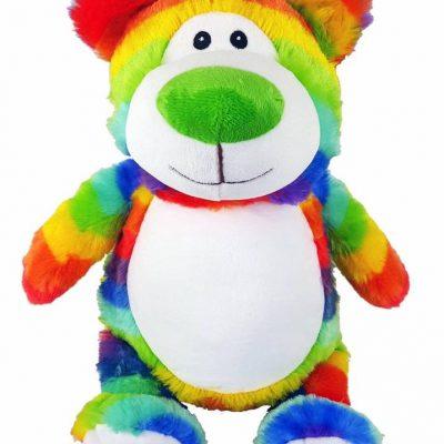 Rainbow bear cubbie